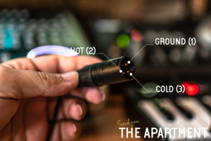 Sounds from the apartment cables male xlr